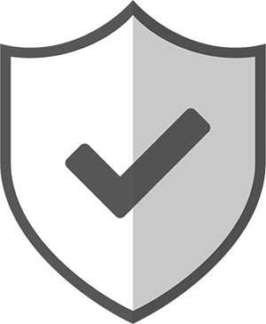 Icon with Checkmark on Shield