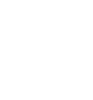 White Shield Icon
